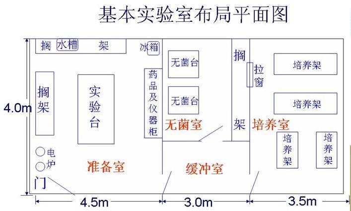 植物组织培养实验室整体设计规划介绍